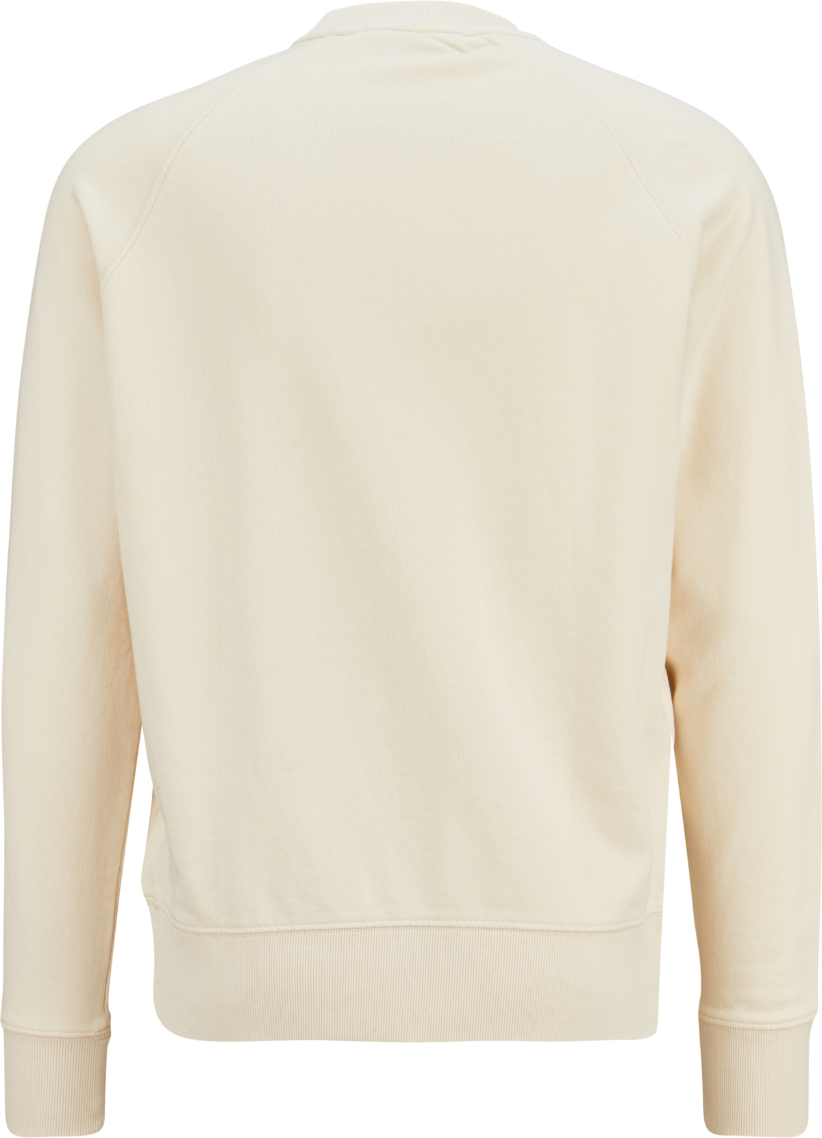 DRYKORN Sweatshirt in Creme 439934